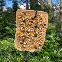 Hanging bread bird feeder (N.B always remove it if it starts to go mouldy)